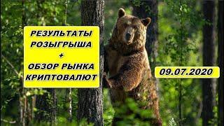 Прогноз курса криптовалют BTC, VET, ADA 09.07.2020