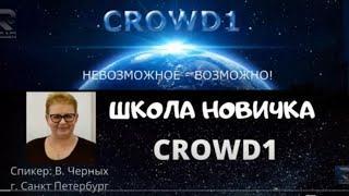 Школа новичка CROWD1:Вера Черных в 15.00 по мск 04.12.2020г