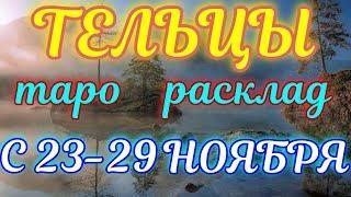 ГОРОСКОП ТЕЛЬЦЫ С 23 ПО 29 НОЯБРЯ НА НЕДЕЛЮ.2020