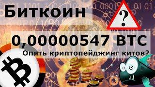 Биткоин 0,00000547 BTC опять криптопейджинг китов? Сервисы международных переводов теряют, а крипта?