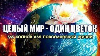 Целый мир - один цветок. 365 коанов для повседневной жизни [Аудиокнига, Nikosho]