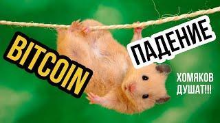 Прогноз Биткоин! Анализ курса биткоин и прибыльных сделок! Обзор bitcoin. Новости btc