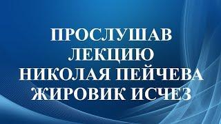 Отзыв о работе Николая Пейчева. После лекции Николая в записи жировик исчез.