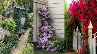 Оригинальные идеи для садового дизайна