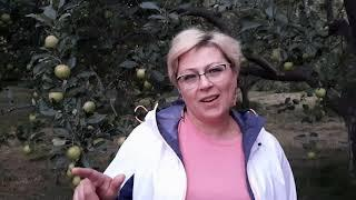 ஐ Отзыв о Летней Школе Гипноза-2020. Валерия, г. Уфа.