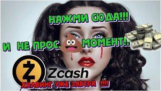 Zcash (ZEC) - обзор криптовалюты, Zcash обзор. Zcash прогноз 2020. Zcash прогноз 2021. Zcash халвинг