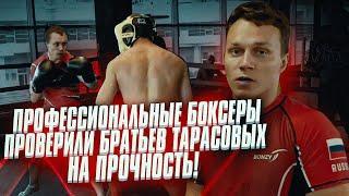 БОКСЕРЫ УНИЧТОЖИЛИ ВСЮ КОМАНДУ ТАРАСОВЫХ / БОКС  vs MMA