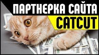 Партнерка CatCut. Заработок на ссылках, сайтах и партнерских программах в Интернете