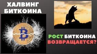 Криптовалюта: Халвинг Биткоина - поговорим о цене