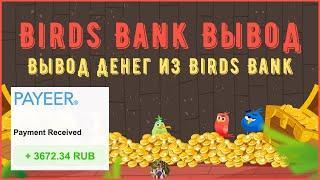 Birds Bank Вывод | Вывод Денег из Birds Bank