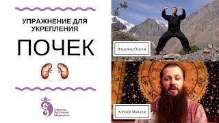 Упражнение для укрепления почек (интервью для Алексея Маматова)