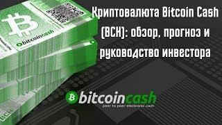 Криптовалюта Bitcoin Cash (BCH): обзор, прогноз и руководство инвестора