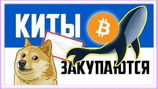 КИТЫ ЗАКУПАЮТ БИТКОИН  — ЧТО ТЕПЕРЬ БУДЕТ? | Биткоин прогноз 2020 сегодня | Bitcoin | Криптовалюта