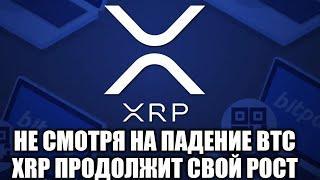XRP ПРОДОЛЖАЕТ РОСТ НЕ ЗАВИСИМО ОТ ПАДЕНИЯ BITCOIN!!! НАС ЖДЕТ МОЩНЫЙ ПАМП XRP RIPPLE!?