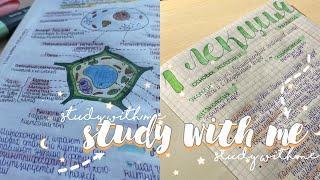 Study with me|мотивация на учёбу|учись со мной|подготовка к огэ|продуктивные дни|стади виз ми