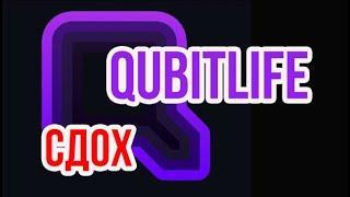 Qubitlife СДОХ  Кубитек  Скам Актуальные Новости  Qubit life Приехали, Что Дальше