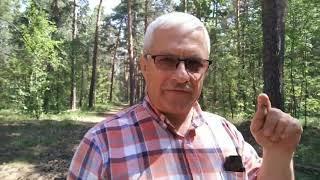 Ученик Владимир Бамбуров заработал 64К за месяц в программе МИТ