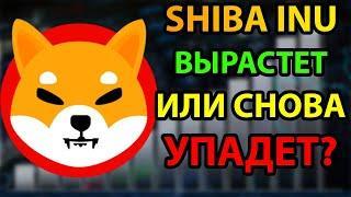 ЧТО ЖЕ БУДЕТ С SHIBA INU | SHIBA INU НОВОСИ | SHIBA INU ПРОГНОЗ