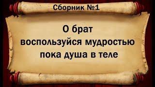 Великие цитаты про мудрость жизни .
