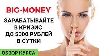 Заработок до 5000 рублей в сутки. Курс Big-money. Обзор.