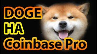 Coinbase ДОГИКОИН DOGE ДОГИ КОИН ИЛОН МАСК  dogecoin как купить  dogecoin 2021 dogecoin обзор