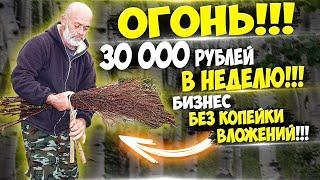 Заработок до 120 000 рублей в месяц без копейки вложений!!! Очень,очень,очень выгодная идея ч.28