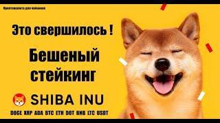Стейкинг SHIBA INU , DOGE coin , XRP под большие проценты годовых / ZEONIS удивил / Biswap / Posi