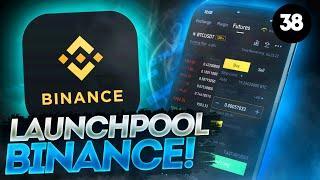 Как зарабатывать в Launchpool Binance