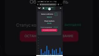 +0.50$, День 13, Binance + Orlov Capital = Заработок на криптовалюте