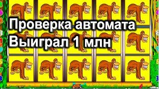 Проверка Казино Вулкан Старс в онлайн игровой автомат Крейзи Манки обезьянки