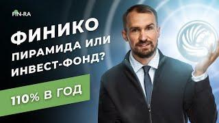 Финико — финансовая пирамида или инвестиционный фонд? Финико инвестиции // finiko