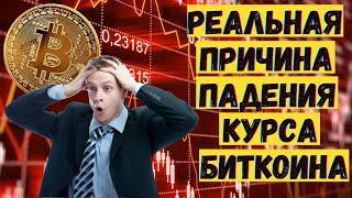 Реальная причина падения курса биткоина  Куда курс биткоина пойдет дальше