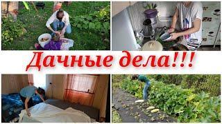 Дачные дела/ моя дача/ мотивация на уборку и готовку/ уборка/ огород
