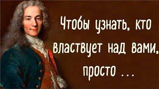 Цитаты Вольтера,  развивающие вашу личность.  Что надо знать о благородстве и мужестве...
