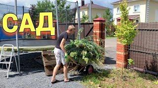 Как создать красивый и современный огород на своем участке  УБОРКА В САДУ ИЮЛЬ