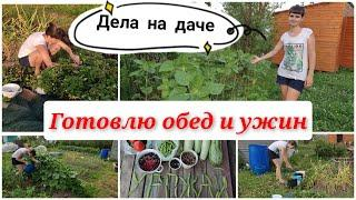 Дела на даче/ дачный сезон 2021/ урожай/ мотивация на уборку и готовку/ мой огород/ моя дача