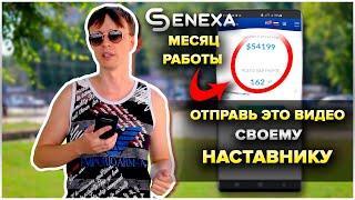 SENEXA обзор маркетинга // Мой отзыв // Проект в инвестициях который стоит качнуть
